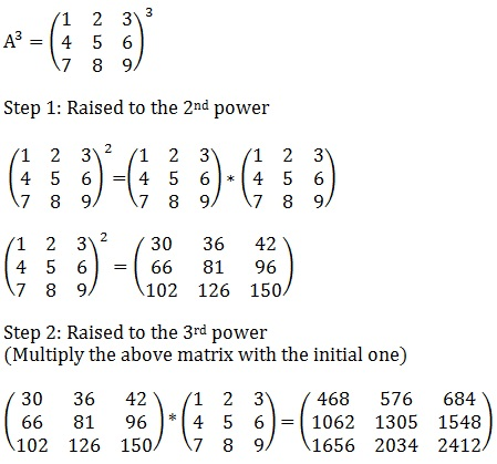 Matrix Power Calculator